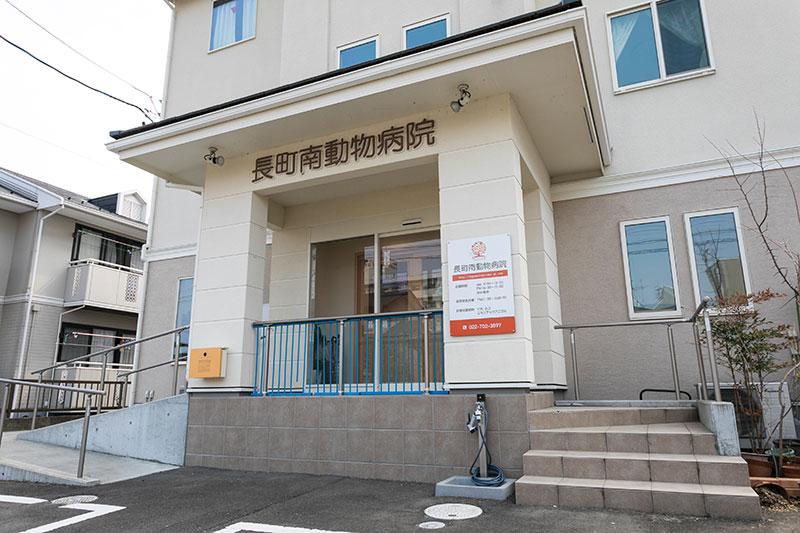 仙台市の長町南動物病院